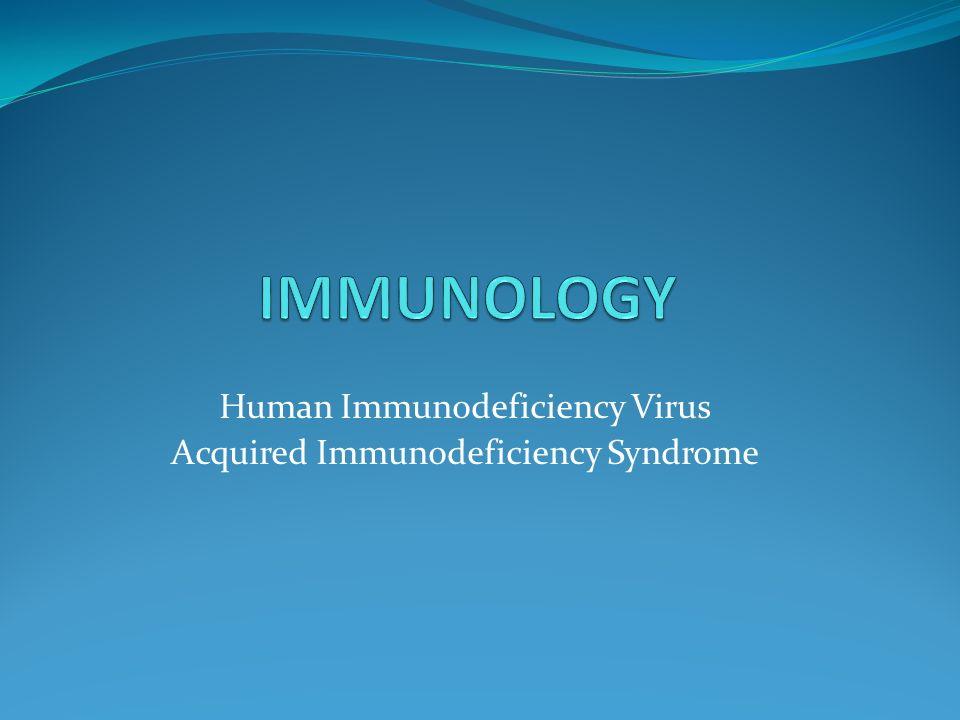 essay on hiv virus
