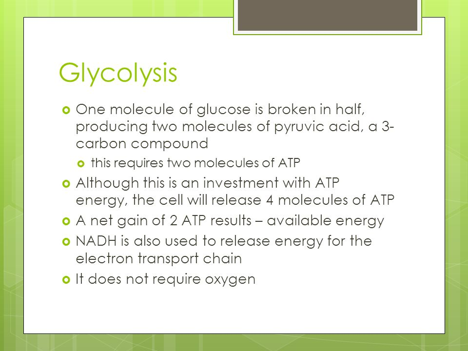Glycolysis  One molecule of glucose is broken in half, producing two molecules of pyruvic acid, a 3- carbon compound  this requires two molecules of ATP  Although this is an investment with ATP energy, the cell will release 4 molecules of ATP  A net gain of 2 ATP results – available energy  NADH is also used to release energy for the electron transport chain  It does not require oxygen