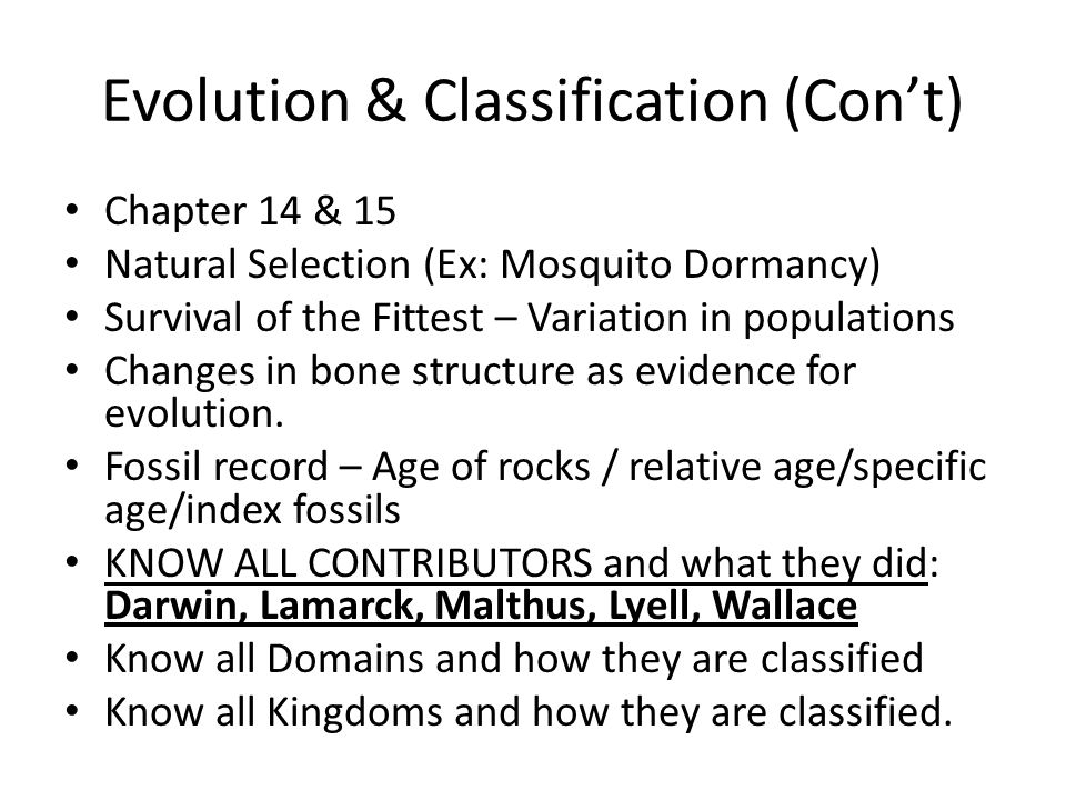 Evolution & Classification (Con't) Chapter 14 & 15 Natural Selection (Ex: Mosquito Dormancy) Survival of the Fittest – Variation in populations Changes in bone structure as evidence for evolution.