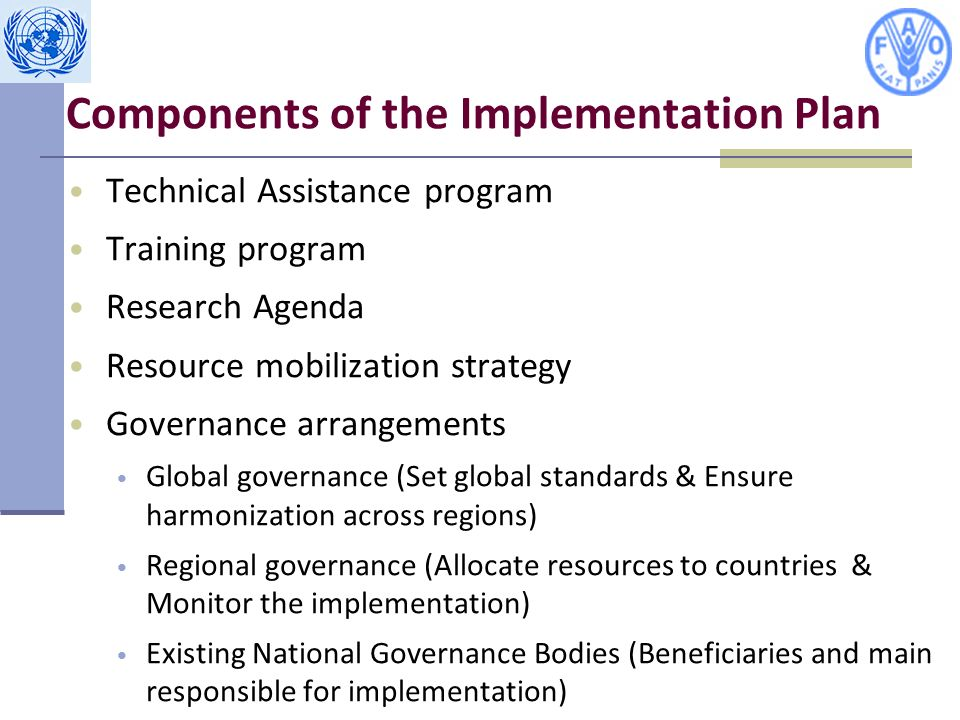Components of the Implementation Plan Technical Assistance program Training program Research Agenda Resource mobilization strategy Governance arrangements Global governance (Set global standards & Ensure harmonization across regions) Regional governance (Allocate resources to countries & Monitor the implementation) Existing National Governance Bodies (Beneficiaries and main responsible for implementation)