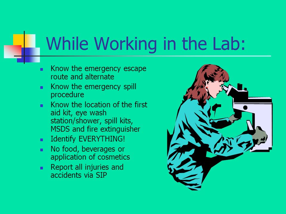 While Working in the Lab: Know the emergency escape route and alternate Know the emergency spill procedure Know the location of the first aid kit, eye wash station/shower, spill kits, MSDS and fire extinguisher Identify EVERYTHING.