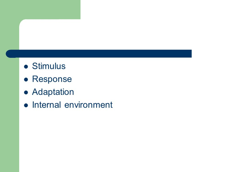 Stimulus Response Adaptation Internal environment