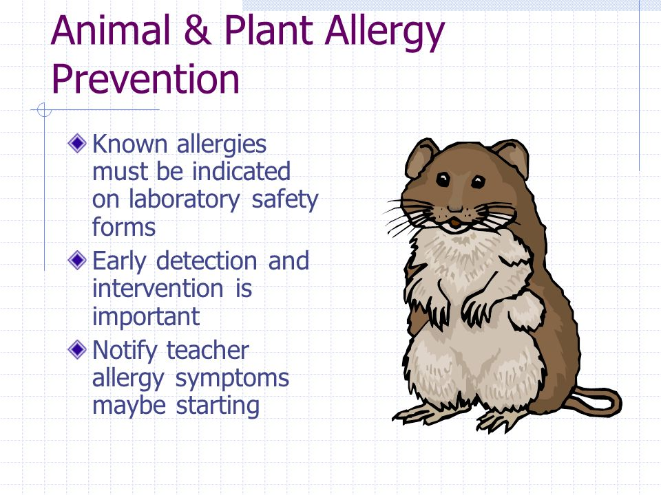 Animal & Plant Allergy Prevention Known allergies must be indicated on laboratory safety forms Early detection and intervention is important Notify teacher allergy symptoms maybe starting