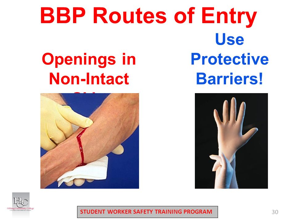 STUDENT WORKER SAFETY TRAINING PROGRAM 30 Openings in Non-Intact Skin Use Protective Barriers.