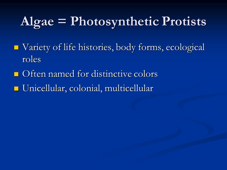 Algae = Photosynthetic Protists Variety of life histories, body forms, ecological roles Variety of life histories, body forms, ecological roles Often named for distinctive colors Often named for distinctive colors Unicellular, colonial, multicellular Unicellular, colonial, multicellular