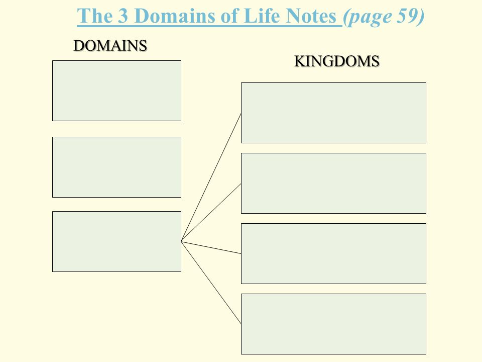 The 3 Domains of Life Notes (page 59) DOMAINS KINGDOMS