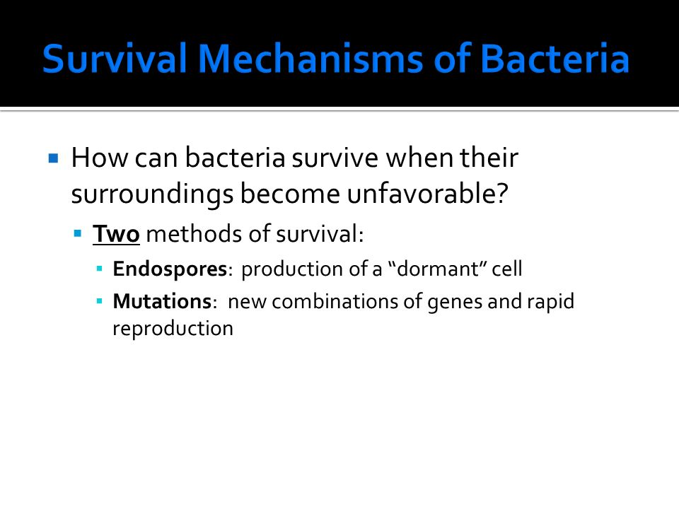  How can bacteria survive when their surroundings become unfavorable.