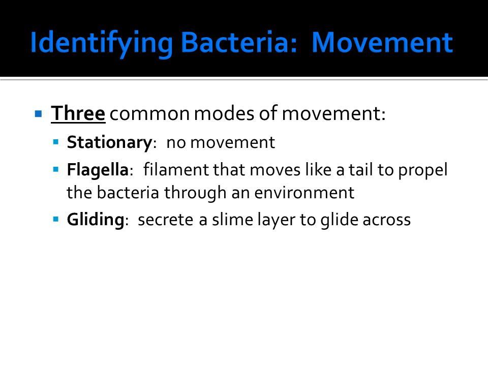  Three common modes of movement:  Stationary: no movement  Flagella: filament that moves like a tail to propel the bacteria through an environment  Gliding: secrete a slime layer to glide across