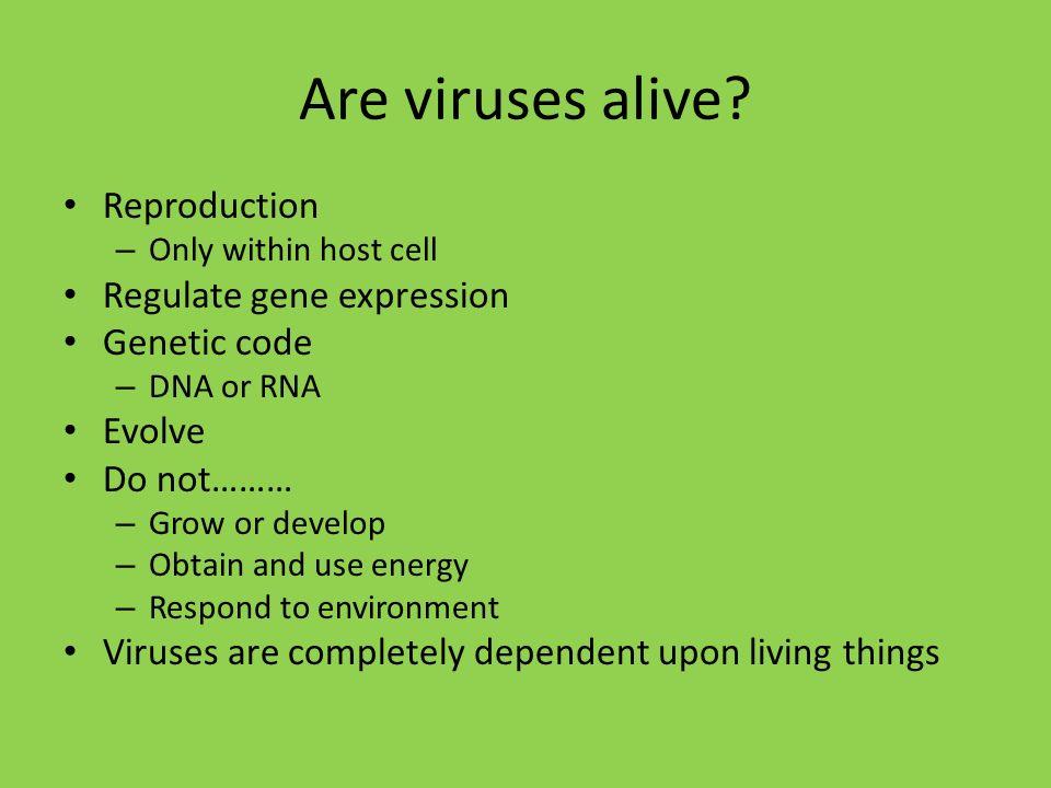 Do viruses respond to the environment?