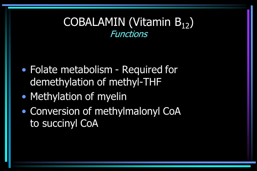 COBALAMIN (Vitamin B 12 ) Functions Folate metabolism - Required for demethylation of methyl-THF Methylation of myelin Conversion of methylmalonyl CoA to succinyl CoA