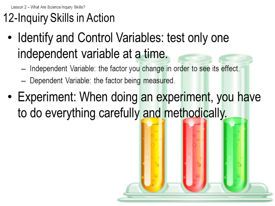 Lesson 2 – What Are Science Inquiry Skills? Identify and Control Variables: test only one independent variable at a time. – Independent Variable: the