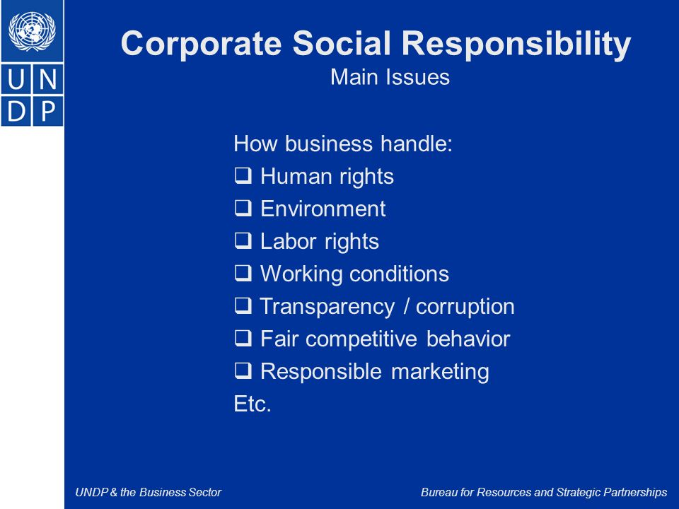 UNDP & the Business SectorBureau for Resources and Strategic Partnerships Corporate Social Responsibility Main Issues How business handle:  Human rights  Environment  Labor rights  Working conditions  Transparency / corruption  Fair competitive behavior  Responsible marketing Etc.