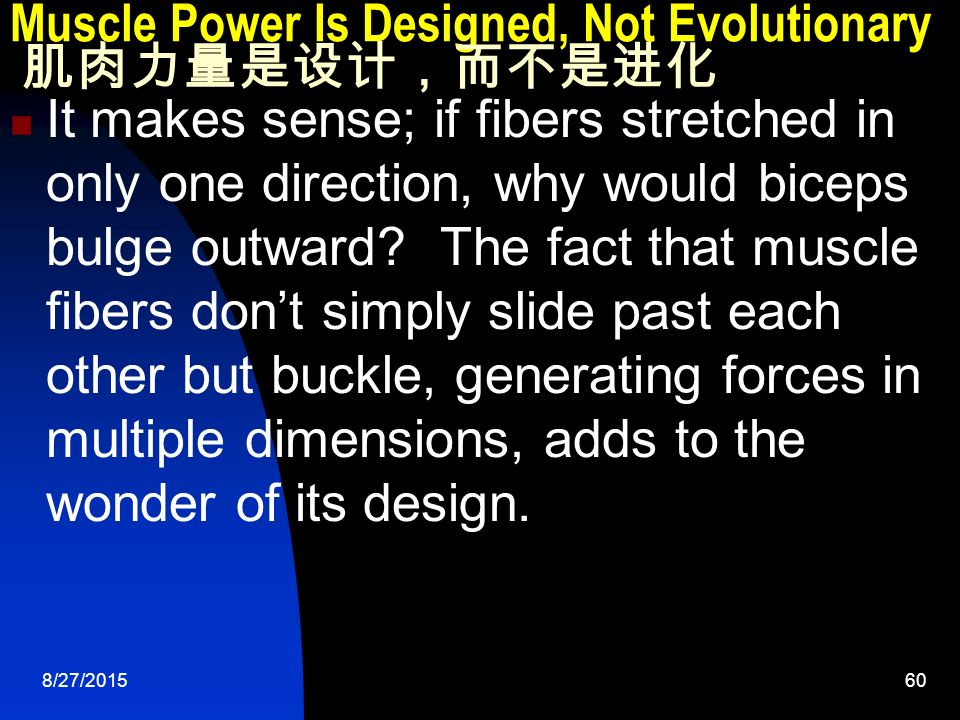 8/27/ Muscle Power Is Designed, Not Evolutionary 肌肉力量是设计,而不是进化 It makes sense; if fibers stretched in only one direction, why would biceps bulge outward.