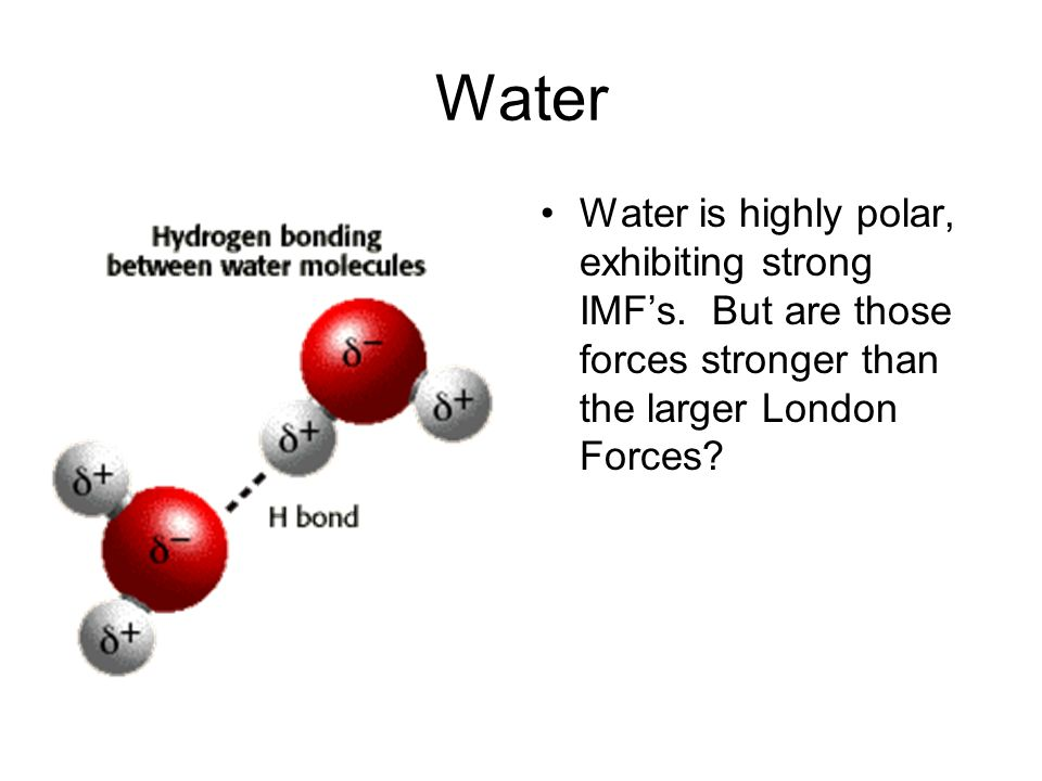 Water Water is highly polar, exhibiting strong IMF's.