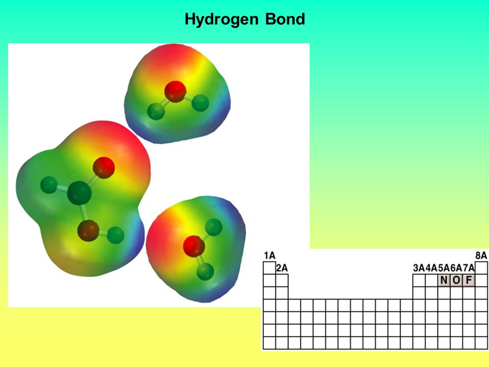 Types of Intermolecular Forces 3.