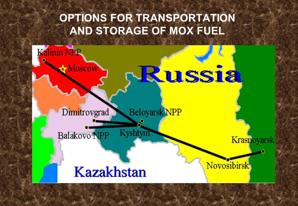 OPTIONS FOR TRANSPORTATION AND STORAGE OF MOX FUEL