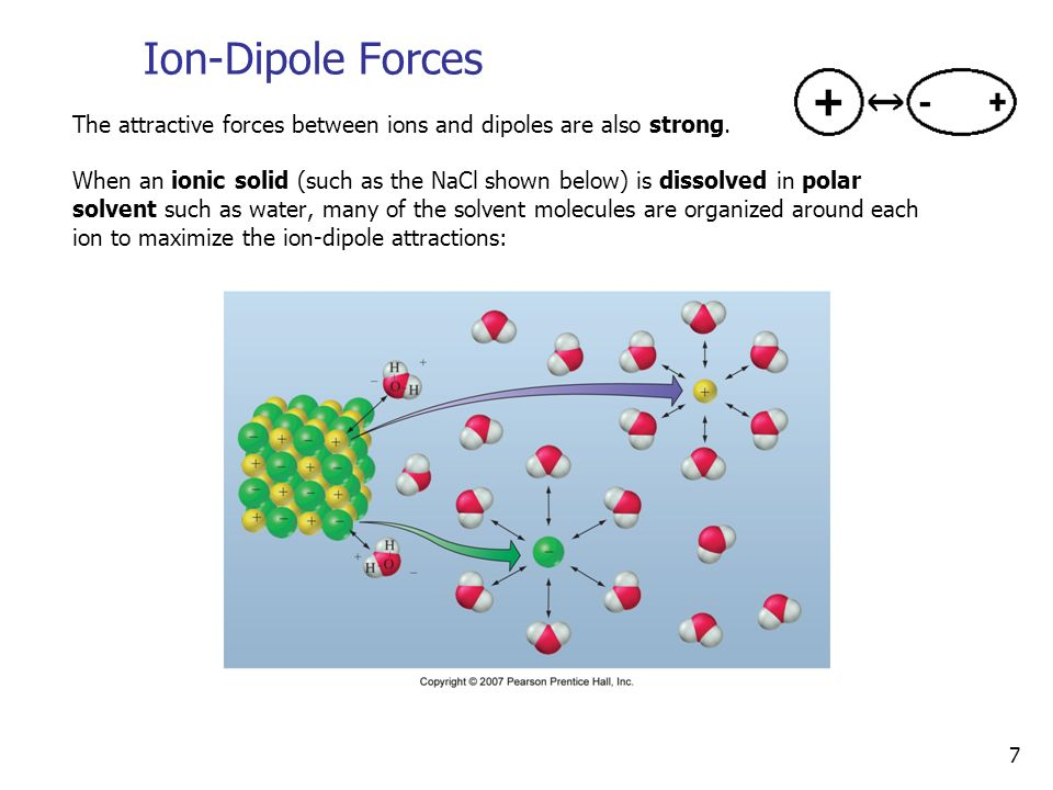 7 Ion-Dipole Forces The attractive forces between ions and dipoles are also strong.