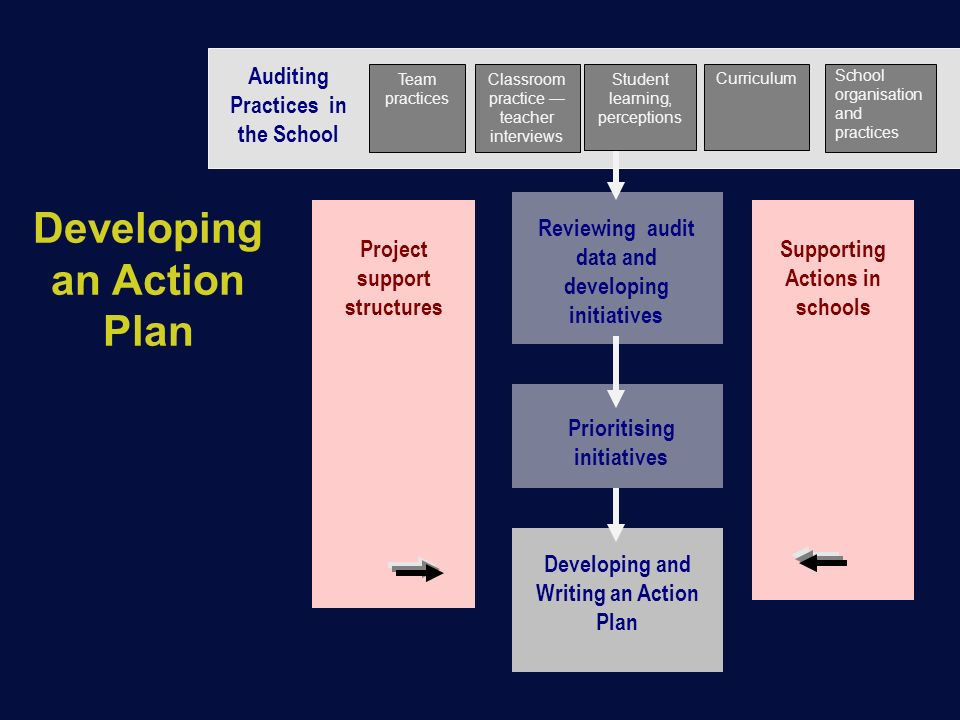 Developing an Action Plan Auditing Practices in the School Project support structures Supporting Actions in schools Reviewing audit data and developing initiatives Developing and Writing an Action Plan Prioritising initiatives Team practices Student learning, perceptions Classroom practice — teacher interviews Curriculum School organisation and practices