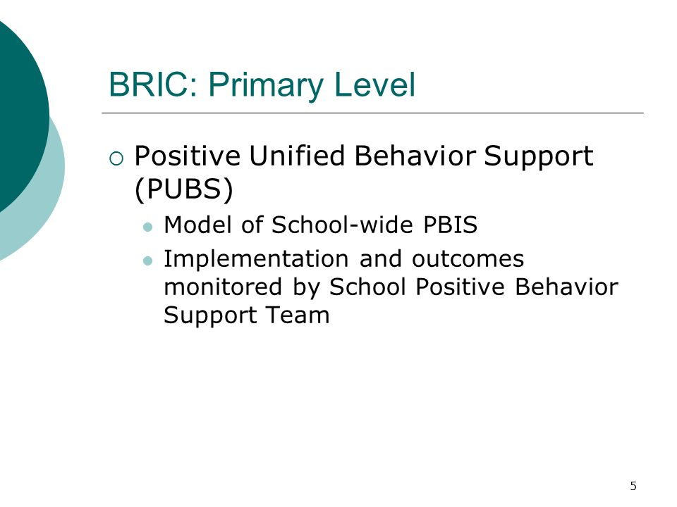 5 BRIC: Primary Level  Positive Unified Behavior Support (PUBS) Model of School-wide PBIS Implementation and outcomes monitored by School Positive Behavior Support Team