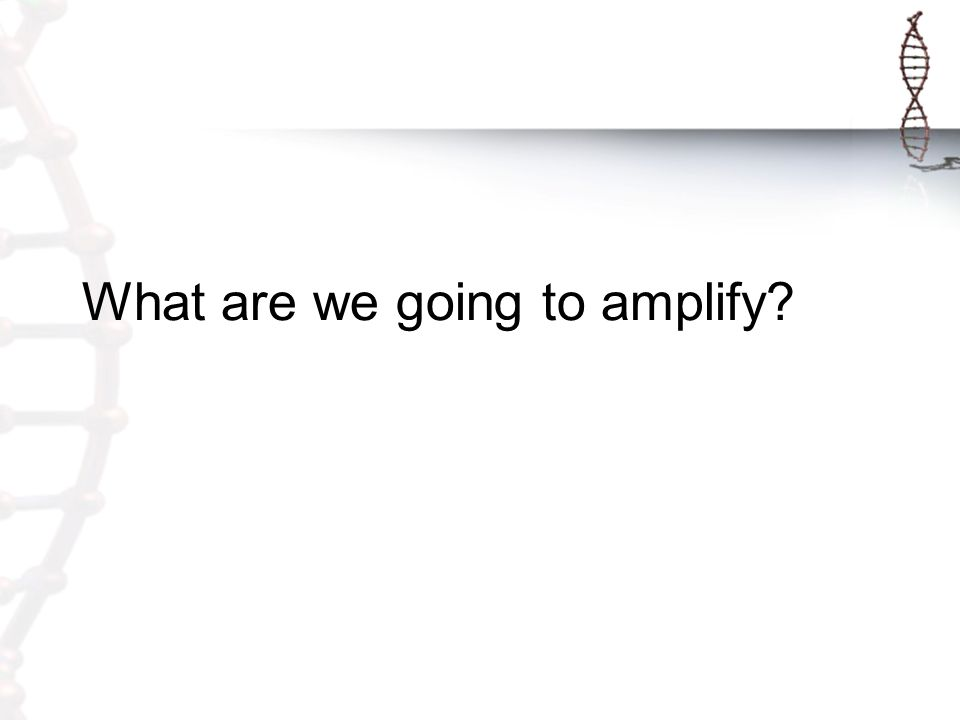 What are we going to amplify