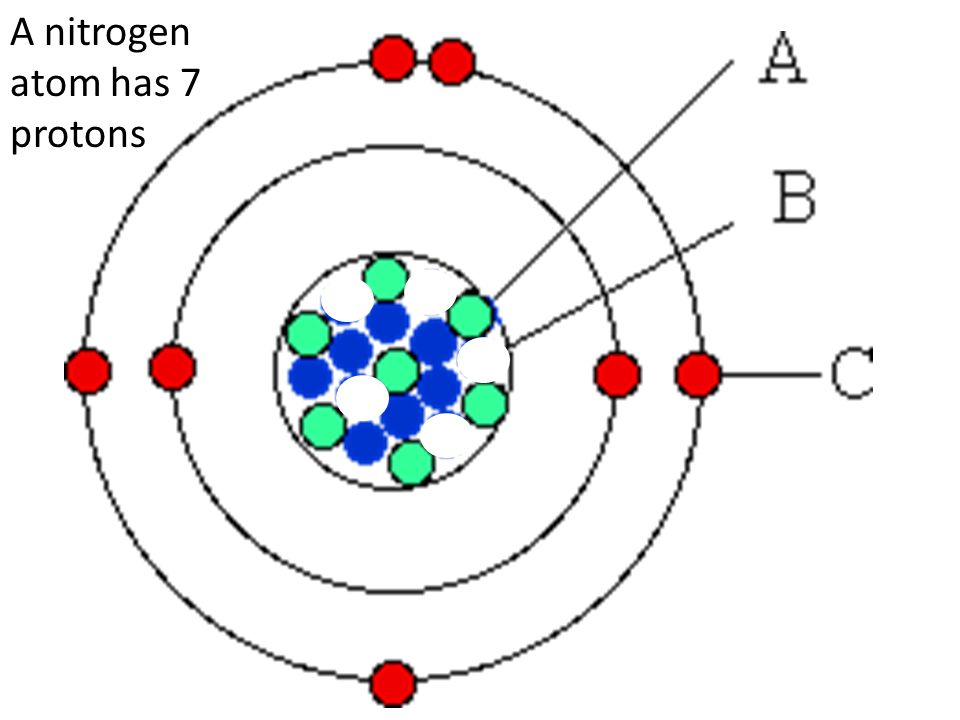 Atomic structure and the periodic table modul03aiii ppt video 13 a nitrogen atom has 7 protons ccuart Choice Image