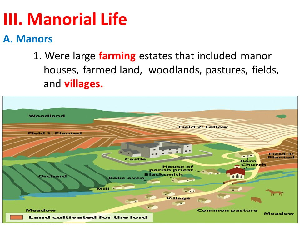III. Manorial Life A. Manors 1.