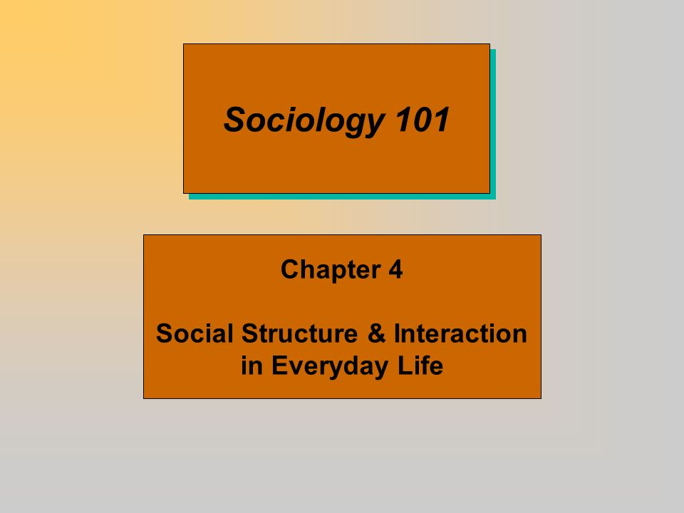Sociology 101 Chapter 4 Social Structure & Interaction in Everyday Life