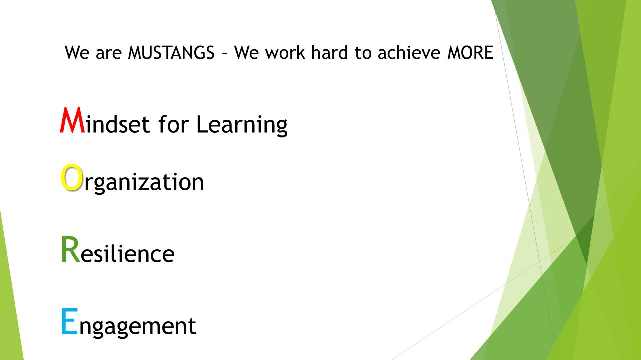We are MUSTANGS – We work hard to achieve MORE M indset for Learning O O rganization R esilience E ngagement