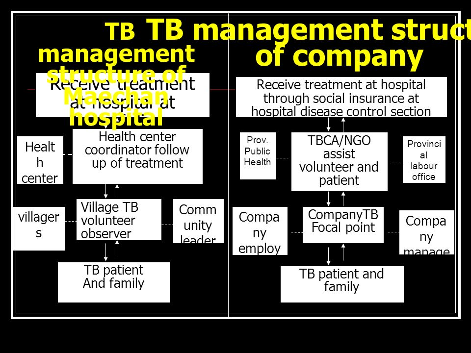 CompanyTB Focal point Compa ny employ ees Compa ny manage ment TB patient and family Receive treatment at hospital through social insurance at hospital disease control section TBCA/NGO assist volunteer and patient Prov.