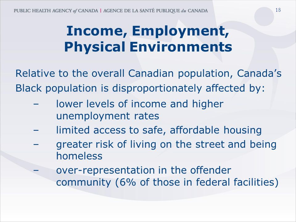 18 Income, Employment, Physical Environments Relative to the overall Canadian population, Canada's Black population is disproportionately affected by: –lower levels of income and higher unemployment rates –limited access to safe, affordable housing –greater risk of living on the street and being homeless –over-representation in the offender community (6% of those in federal facilities)