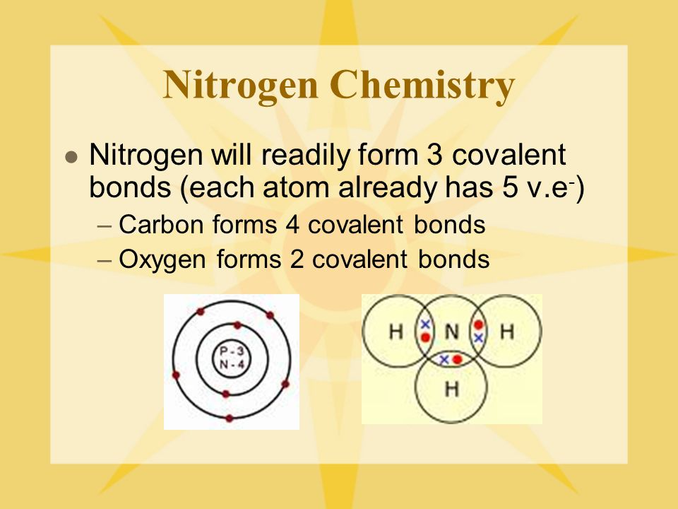 Nitrogen Chemistry Nitrogen will readily form 3 covalent bonds (each atom already has 5 v.e - ) –Carbon forms 4 covalent bonds –Oxygen forms 2 covalent bonds