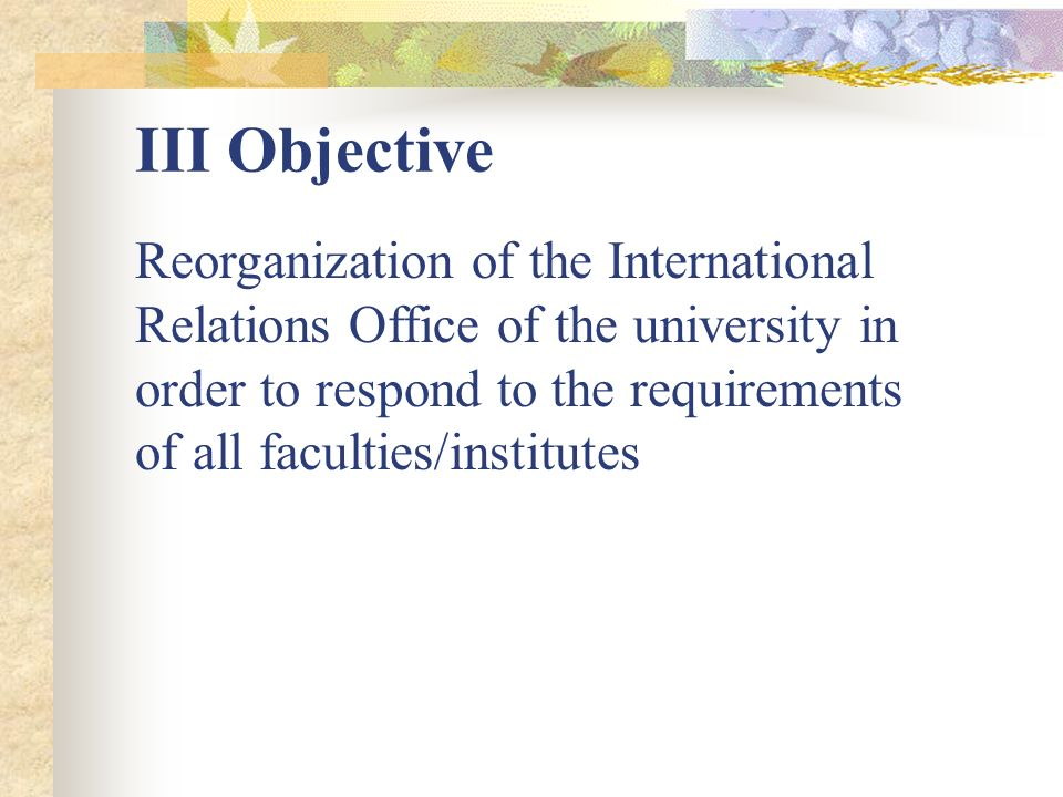 III Objective Reorganization of the International Relations Office of the university in order to respond to the requirements of all faculties/institutes