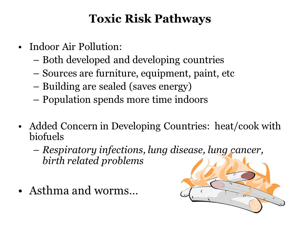 Toxic Risk Pathways Indoor Air Pollution: –Both developed and developing countries –Sources are furniture, equipment, paint, etc –Building are sealed (saves energy) –Population spends more time indoors Added Concern in Developing Countries: heat/cook with biofuels –Respiratory infections, lung disease, lung cancer, birth related problems Asthma and worms…