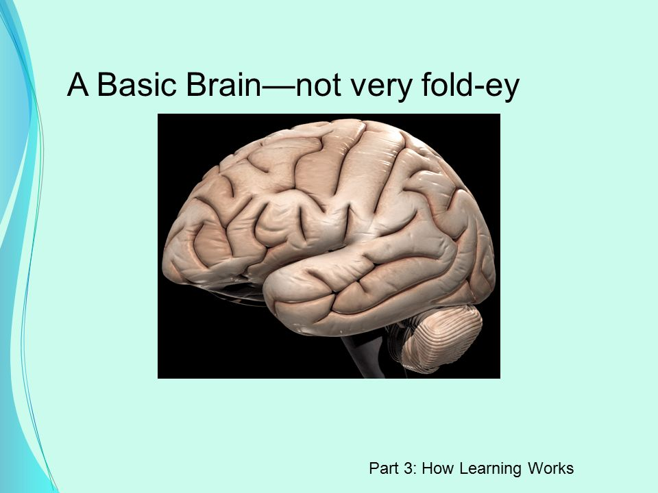A Basic Brain—not very fold-ey Part 3: How Learning Works