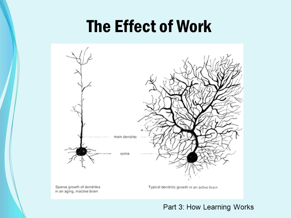 The Effect of Work Part 3: How Learning Works