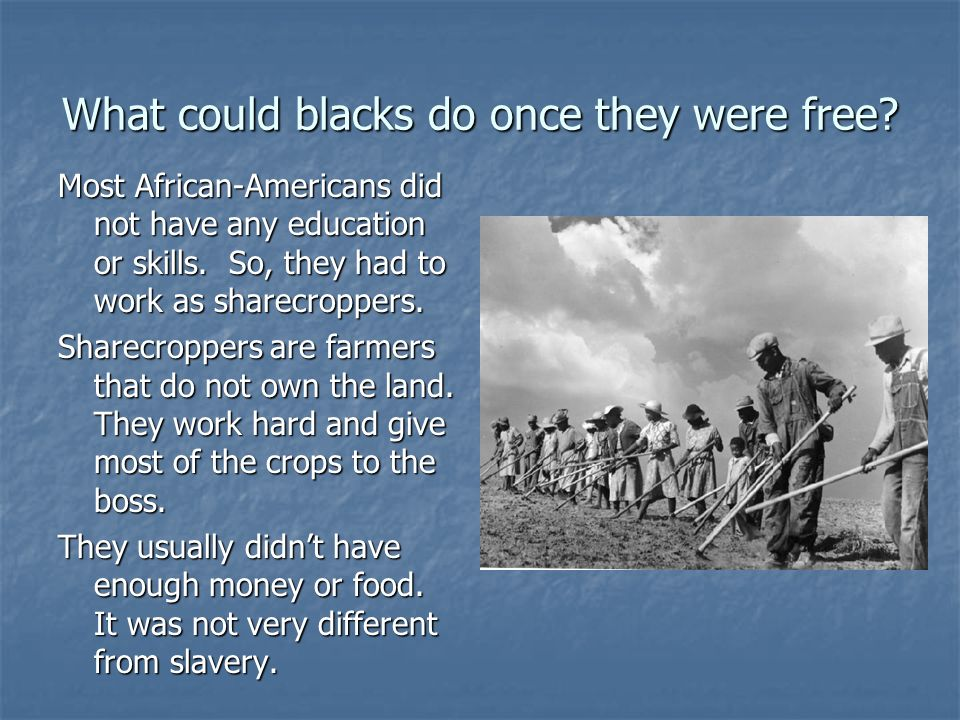 What could blacks do once they were free.