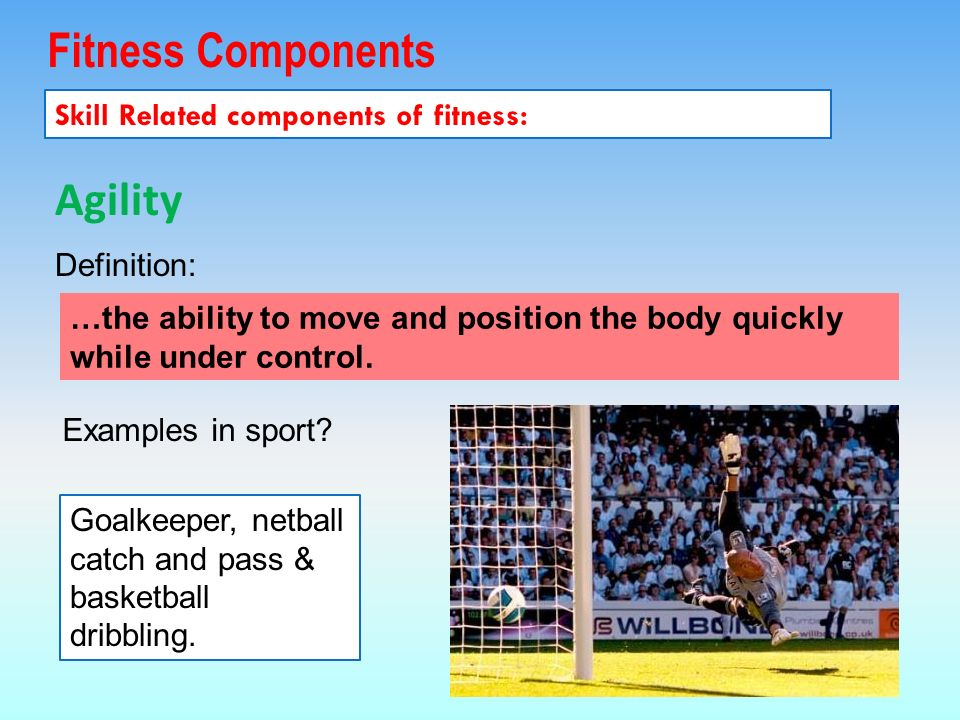 Fitness Components Skill Related components of fitness: Agility Examples in sport.