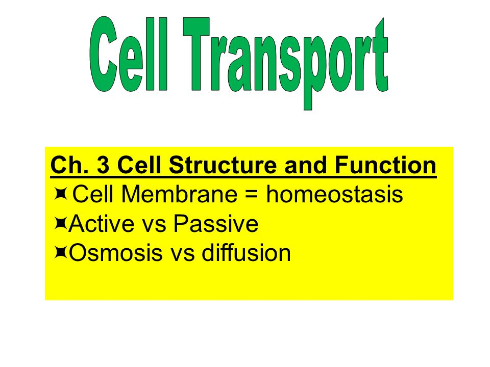 Learning Goal: Demonstrate your knowledge of cellular transport, energy and genetics.
