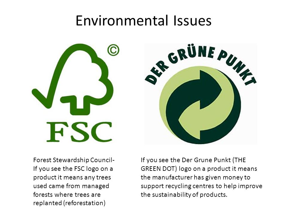 forest management the forest stewardship council essay Sustainable forest management is the management of forests according to the principles of forest stewardship council forest management working papers.