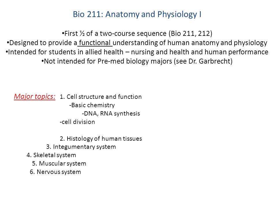 Summer Human Anatomy & Physiology Courses?