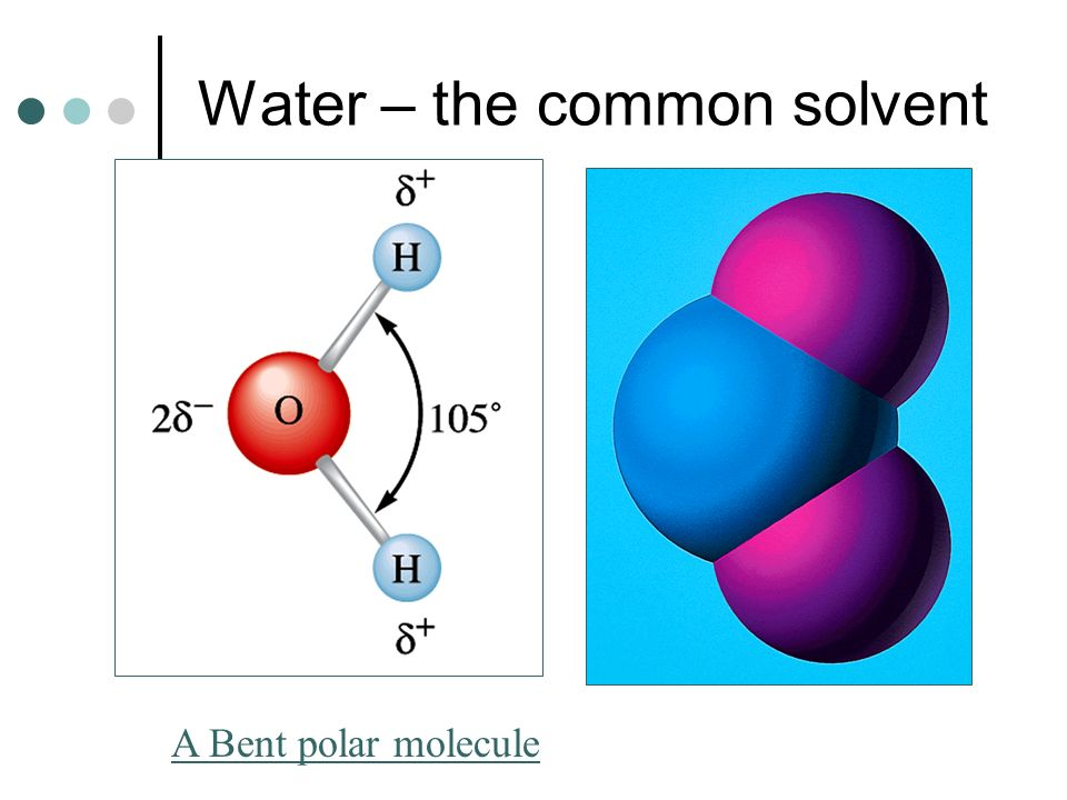 Water – the common solvent A Bent polar molecule
