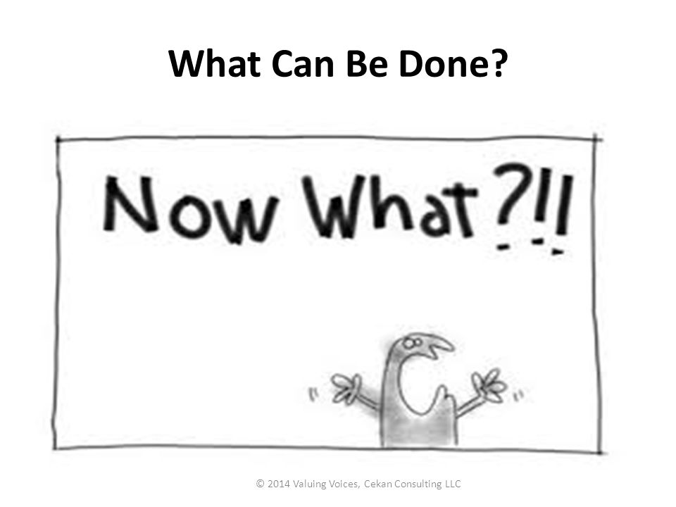 What Can Be Done? © 2014 Valuing Voices, Cekan Consulting LLC
