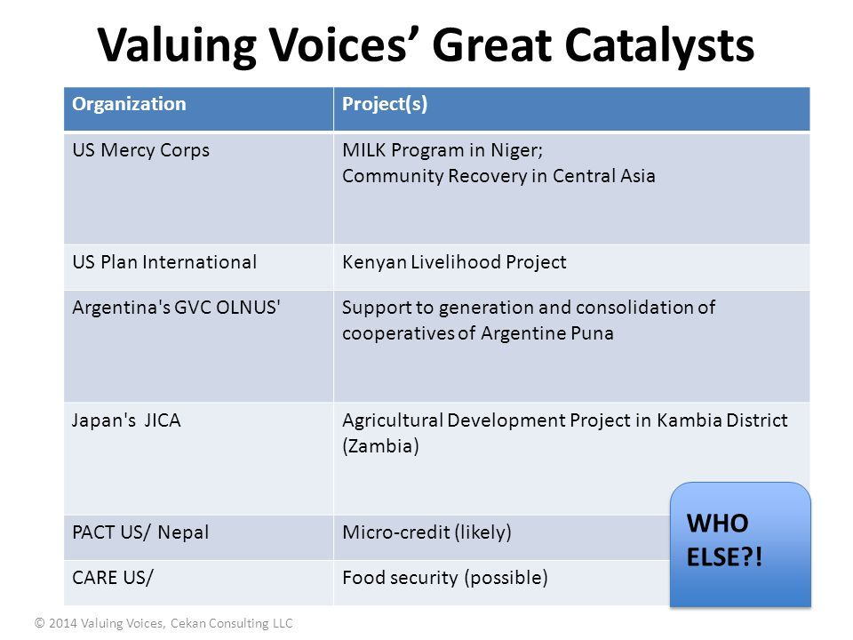 Valuing Voices' Great Catalysts © 2014 Valuing Voices, Cekan Consulting LLC OrganizationProject(s) US Mercy CorpsMILK Program in Niger; Community Recovery in Central Asia US Plan InternationalKenyan Livelihood Project Argentina s GVC OLNUS Support to generation and consolidation of cooperatives of Argentine Puna Japan s JICAAgricultural Development Project in Kambia District (Zambia) PACT US/ NepalMicro-credit (likely) CARE US/Food security (possible) WHO ELSE?!