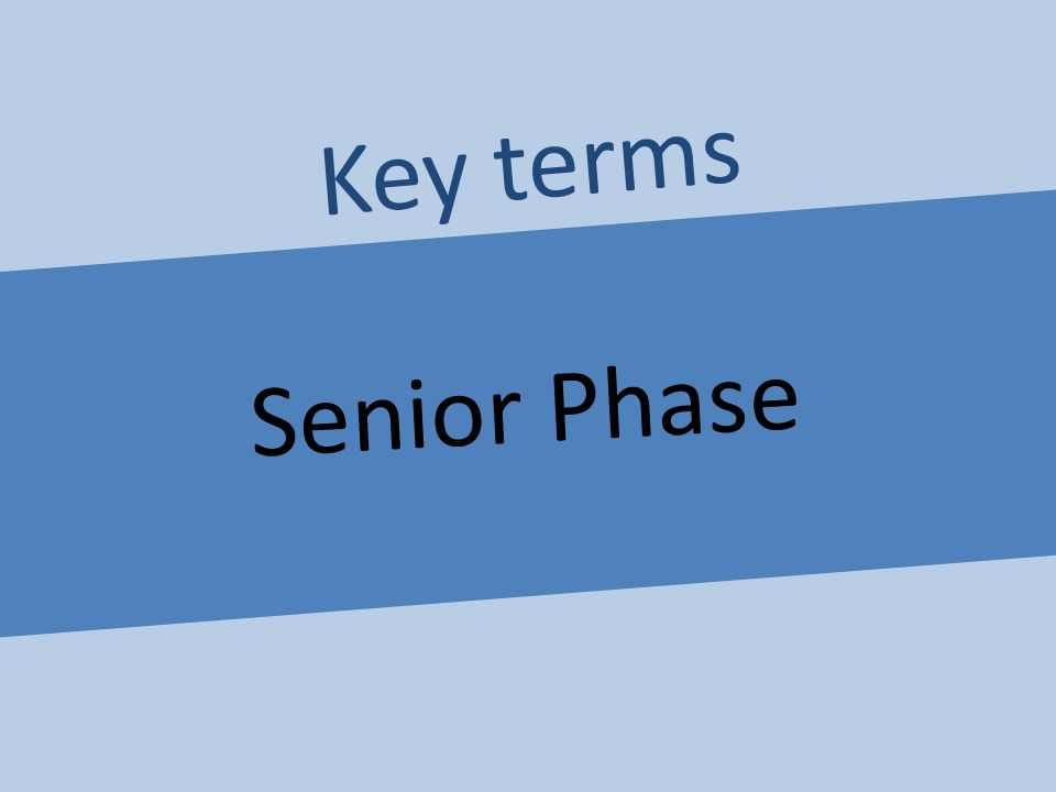 Senior Phase Key terms