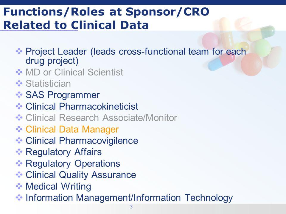 3 3 - Clinical Database Programmer