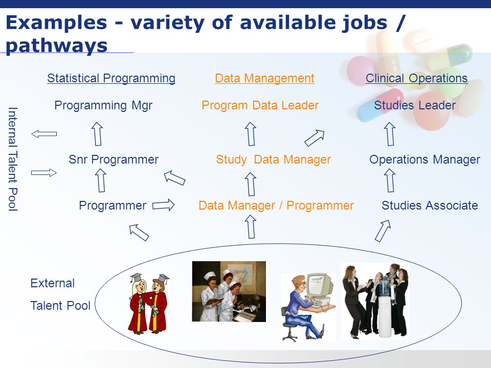 5 examples variety of available jobs pathways statistical programming data management clinical - Clinical Database Programmer