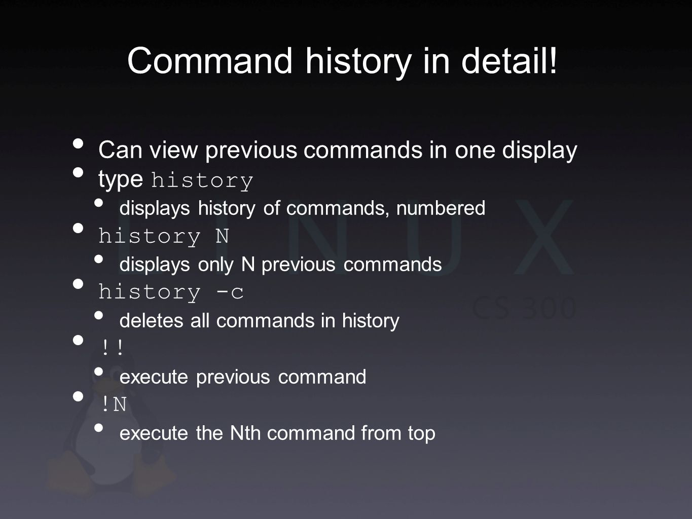 Command history in detail.