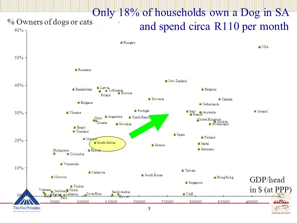 Only 18% of households own a Dog in SA and spend circa R110 per month Canada USA Argentina Brazil Chile Colombia Costa Rica Mexico Peru Venezuela Austria Belgium France Germany Greece Ireland Italy Netherlands Portugal Spain Switzerland United Kingdom Finland Estonia Latvia Lithuania Czech Republic Hungary Poland Slovakia Russia Ukraine Kazakhstan Australia New Zealand Japan China Hong Kong Indonesia Malaysia Philippines Singapore South Korea Taiwan Thailand Vietnam Romania Bulgaria Croatia Slovenia Egypt Morocco Turkey Lebanon India Saudi Arabia UAE Kuwait South Africa 0% 10% 20% 30% 40% 50% 60% % Owners of dogs or cats (2005) GDP/head in $ (at PPP)