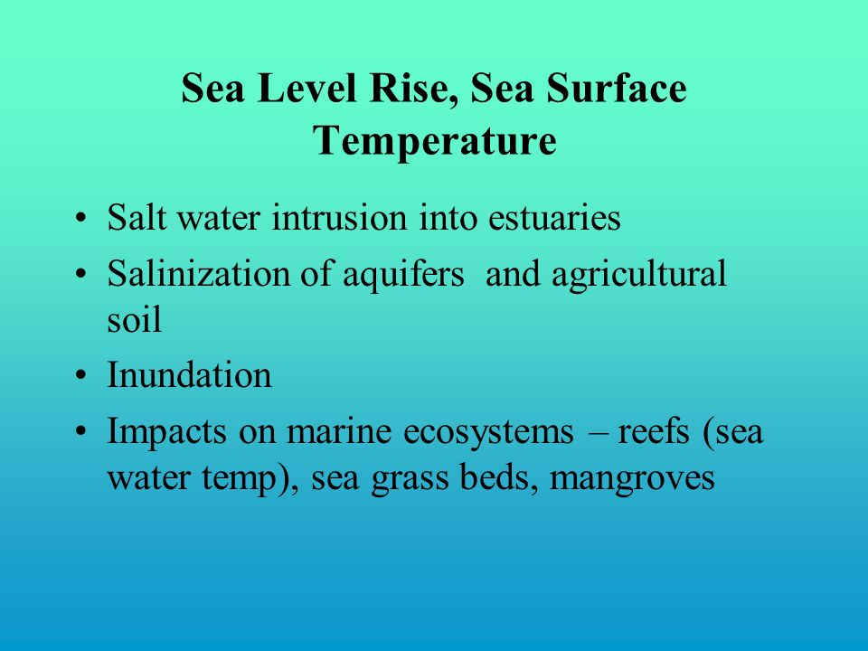 Sea Level Rise, Sea Surface Temperature Salt water intrusion into estuaries Salinization of aquifers and agricultural soil Inundation Impacts on marine ecosystems – reefs (sea water temp), sea grass beds, mangroves