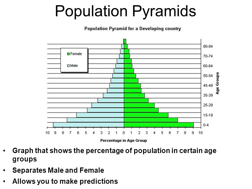 Population Pyramids Graph that shows the percentage of population in certain age groups Separates Male and Female Allows you to make predictions